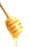 Honey stick. On white background stock photography