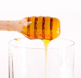 Honey stick Royalty Free Stock Image