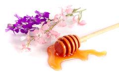 Honey stick with flowing honey and wildflowers  on white background Stock Photo