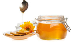 Honey still life Stock Photos