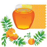 Honey. Summer vector illustration. Vector background in orange color vector illustration