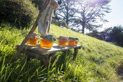 Honey in the sun light Stock Photography