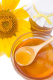 Honey and sunflower Stock Images