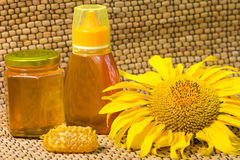 Honey and sunflower Royalty Free Stock Photography