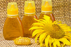Honey and sunflower royalty free stock photo