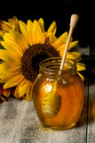 Honey And Sunflower Stock Photo