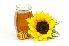 Honey and sunflower Stock Photos