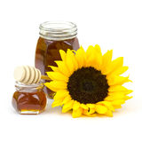 Honey and sunflowers Royalty Free Stock Photography