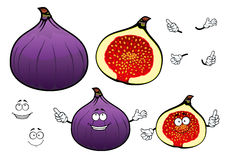 Honey sweet fig fruit cartoon characters Stock Photography