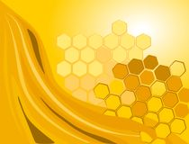 Honey. Sweet honey with two honeycombs Stock Image
