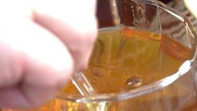 Honey Tasting stock footage