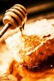 Honey Tasting orgánico Fotos de archivo