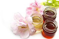 Honey and tulips Stock Images