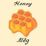 Honey. Vector drawing and hand-lettering. In English and Russian texts. Stock Photography