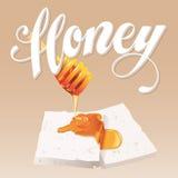 Honey Vector Illustration Foto de archivo libre de regalías