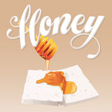 Honey Vetora Illustration Foto de Stock Royalty Free