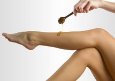 Honey wax Stock Image