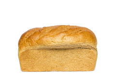 Honey Wheat Bread Loaf Royalty Free Stock Photography