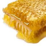 Honey on a white background Stock Photos