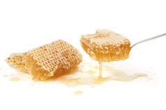 Honey on white Stock Images