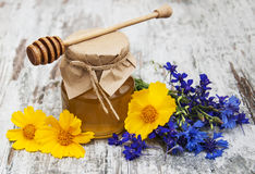 Honey and wild flowers Stock Images
