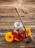 Honey with wood stick Royalty Free Stock Photos