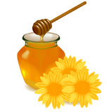 Honey with wood stick and flowers. Stock Photography