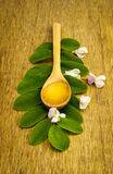 Honey in wooden spoon Royalty Free Stock Photography