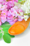 Honey in a wooden spoon with acacia flowers Stock Images
