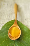 Honey in a wooden spoon Royalty Free Stock Images