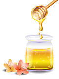 Honey with a wooden stick and flowers Stock Images