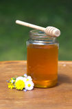 Honey with wooden wand Royalty Free Stock Photography