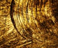 Honey yellow circular abstract texture Stock Photography