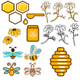 Honeybee and flowers apiary vector icon set. Royalty Free Stock Images