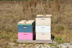 Honeybee Hives 2. Honeybee hives help to pollinate an orange grove royalty free stock photos