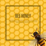Honeybee on honeycomb retail banner. Natural product advertising, traditional and healthy vegan food, sweet delicacy vector illustration. Insect symbol for Stock Photography