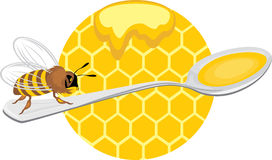Honeybee on the spoon. Icon for design Stock Photography