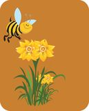 Honeybee swiping the honey Stock Photos