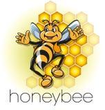 Honeybees in a beehive Stock Photo