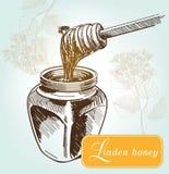 Honeybees on a comb Stock Photos