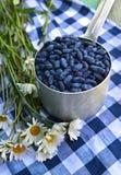 Honeyberry im alten Schöpflöffel mit Gänseblümchen blüht auf Tischdecke Lizenzfreies Stockfoto