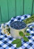 Honeyberry im alten Schöpflöffel mit Gänseblümchenblumen Lizenzfreie Stockfotos