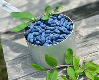 Honeyberry in old ladle on planks Royalty Free Stock Photo