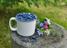 Honeyberry in white cup with wildflowers horizontal Royalty Free Stock Images