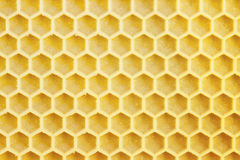 Honeycells Royalty Free Stock Photography