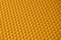 Honeycomb. Studio shot of real wax honeycomb Stock Images