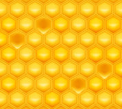 Honeycomb. Computer illustration, isolated on the white Royalty Free Stock Photography