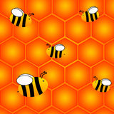 Honeycomb. Bees gathering honey and flying around a honeycomb Stock Image