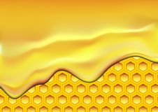 Honeycomb Royalty Free Stock Photos