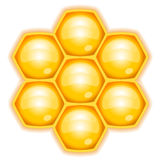 Honeycomb. Vector illustration of honeycomb isolated Stock Photos